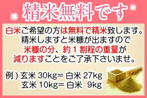 30年産 米 30kg  秋田県産 あきたこまち 玄米(10kg×3袋) 一等米 お米 白米 27kg お祝い 御贈答