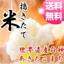 【29年産】【米 5kg 送料無料】秋田県産 あきたこまち ...