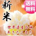 【新米】【30年産】【米 30kg 送料無料】秋田県産 あき...