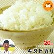 滋賀県永源寺地区産キヌヒカリ【ニシオカファーム】5kg