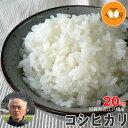 新米 滋賀県近江八幡産 コシヒカリ 玄米 20kg 産地直送 令和2年産 内野営農組合 環境こだわり米(減農薬) 送料無料