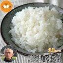 新米 食べ比べ 玄米 20kg (10kg×2) 滋賀県近江八幡産 キヌヒカリ コシヒカリ 令和元年産 内野営農組合 環境こだわり米(減農薬) 送料無料