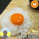 米 食べ比べ 白米 10kg (5kg×2) 滋賀県東近江産 あきたこまち にこまる 令和元年産 大橋忠喜 送料無料
