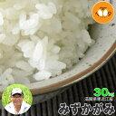 新米 滋賀県長浜産 みずかがみ 玄米 30kg 産地直送 アグリ39 29年産 環境こだわり米(減農薬) 送料無料