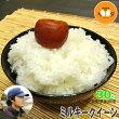 長野県上水内郡飯綱産ミルキークイーン玄米30kg