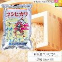 新潟産 コシヒカリ 5kg(5kg×1袋) 令和元年産 米 5kg 送料無料 こしひかり 新潟 白米 精米 真空パック 1
