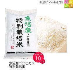 魚沼産コシヒカリ特別栽培米10キロ