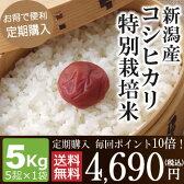 【定期購入】毎回ポイント10倍!新潟産コシヒカリ特別栽培米5kg(5kg×1袋)
