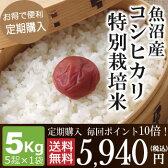 【定期購入】毎回ポイント10倍!魚沼産コシヒカリ特別栽培米5kg(5kg×1袋)