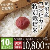 【定期購入】毎回ポイント10倍!魚沼産コシヒカリ特別栽培米10kg(5kg×2袋)