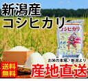 【お買得 17%OFF】新潟産 コシヒカリ 20kg(5kg×4袋) 令和元年産 米 20kg 送料無料 こしひかり 新潟 白米 真空パック 2