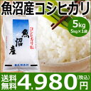 【米 5kg 送料無料】魚沼産コシヒカリ5kg(5kg×1袋...