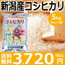 【米】【新米】新潟産コシヒカリ5kg(5kg×1袋)【29年産】【送料無料】新潟から産地直送、精米仕立をお届けします。