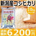 【新米】新潟産コシヒカリ10kg(5kg×2袋)【29年産】【送料無料】新潟から産地直送、精米仕立をお届けします。