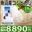 【新米】魚沼産コシヒカリ10kg(5kg×2袋)【29年産】【送料無料】新潟から産地直送、精米仕立をお届けします。