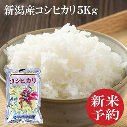新潟産コシヒカリ5キロ