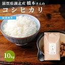 【ふるさと納税】JAぴっぷ町 ゆめぴりか 精米5kg 2020年産米