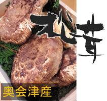 250gの大型松茸