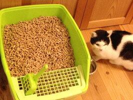 猫砂・猫のシステムトイレにも