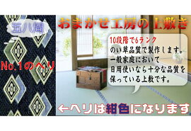 10畳(58間)(藺草上敷き畳)双目織り