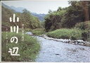 【中古】[映画パンフレット]小川の辺(2011年)/東山紀之 菊地凛子 勝地涼 片岡愛之助 尾野真千子