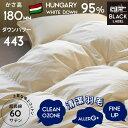 羽毛布団 マザー プレミアムキナリ ハンガリー産マザーダウン 95% かさ高180mm以上 ダウンパワー440cm3/gっ上 シングル 超長綿 60サテン CILブラックラベル プレミアムゴールド相当