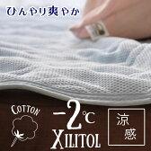 マイナス2℃シリーズ® Wメッシュ敷きパット 爽涼加工 キシリトール配合 キシリトールには吸熱反応、涼感効果、保湿効果 身体を冷やしすぎる事なく自然な清涼感 ヒンヤリマット シングル ひんやりマット  あす楽対応