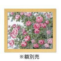 オリムパス オノエ・メグミ ししゅうキット 愛すべき花たち オールドローズ 7450