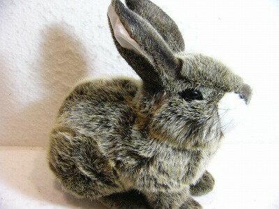 ケーセン社のぬいぐるみ・ウサギ・座り ベージュ