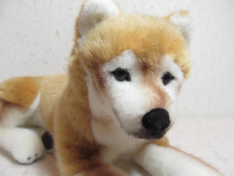 ケーセン社・柴犬・伏せ ぬいぐるみ 出産祝い ギフト ラッピング無料 2歳 3歳 4歳 おもちゃ