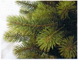 クリスマスツリーNEW・RSGLOBALTRADE社120cm10P12Oct14クリスマスツリーアトリエニキティキ