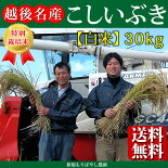 新潟県産特別栽培米こしいぶき30kg(白米)【新潟県産コシイブキ】【もりばやし農園特別栽培米コシイブキ】