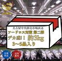レビューで北海道産函館ほたて塩辛プレゼント デカ盛り 市場応