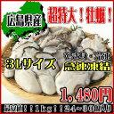 【カキ3L】広島県産!希少!超大粒 3L 牡蠣(かき/カキ)...