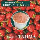 香美苺のジェラート 12個セット(兵庫県但馬のイチゴを50%以上使用)【ユースランド】
