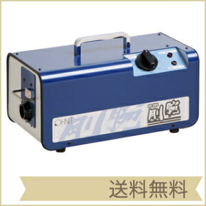 【オゾン発生器】剛腕GWN-300CT【業務用:ホテル・会議室・自動車など】