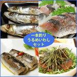 一本釣りうるめいわしセット(1日干、炙りたたき、オイルサーディン、ぶっかけ漬け丼)