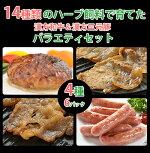 【国産】漢方和牛・漢方三元豚バラエティーセット(全4品)【ハンバーグ】【ウインナー】【タレ漬け】【ギフト】