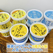 奄美ジェラート3種各4個人気ベスト3セット(奄美塩・宇検村たまごバニラ・島ざらめ