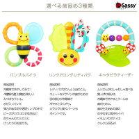 Sassy歯固めとリストバンド紹介