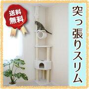キャットタワー おしゃれ スペース シンプル キャットツリー ボックス ブラウン ホワイト