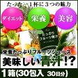 めっちゃたっぷりフルーツ青汁 1箱(30包 約 30日分)
