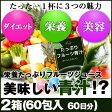 めっちゃたっぷりフルーツ青汁 2箱(60包 約60日分)