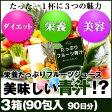 めっちゃたっぷりフルーツ青汁 3箱(90包 約90日分)