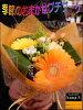 セミオーダーで1番輝いている生花でプチブーケ(ミニブーケ)ミニ花束ピアノバレエの発表会お祝い卒業式卒園式などに【楽ギフ_包装】【楽ギフ_メッセ入力】【人気ランキング】花束ギフトデザイナーおまかせ花束♪