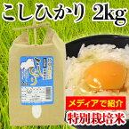 【26年度産】広島県東城町産 こしひかり 特別栽培米 2kg