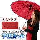 雨傘 通販