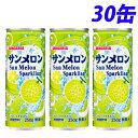 サンガリア サンメロン 250g×30缶