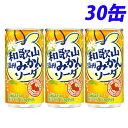 サンガリア 和歌山温州みかんソーダ 190g×30缶...