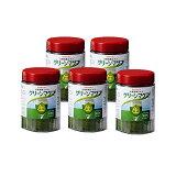 【期間限定価格】グリーンマグマ 170g【5個セット+30包90g増量】 日本薬品開発 大麦若葉 青汁 酵素 赤神力